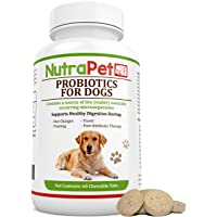 NutraPet Probiotics for Dogs Chewable, Digestive Health Supplement with Added Prebiotic, Vitamins and Minerals for an Active Lifestyle, 60 Tabs