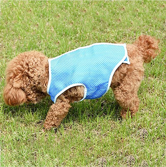BOLUBILUY Pet Cooling Vest,Summer Cool Jacket Coat Vest T-Shirt Clothes Clothing Drop Temperature for Dog Puppy Pet