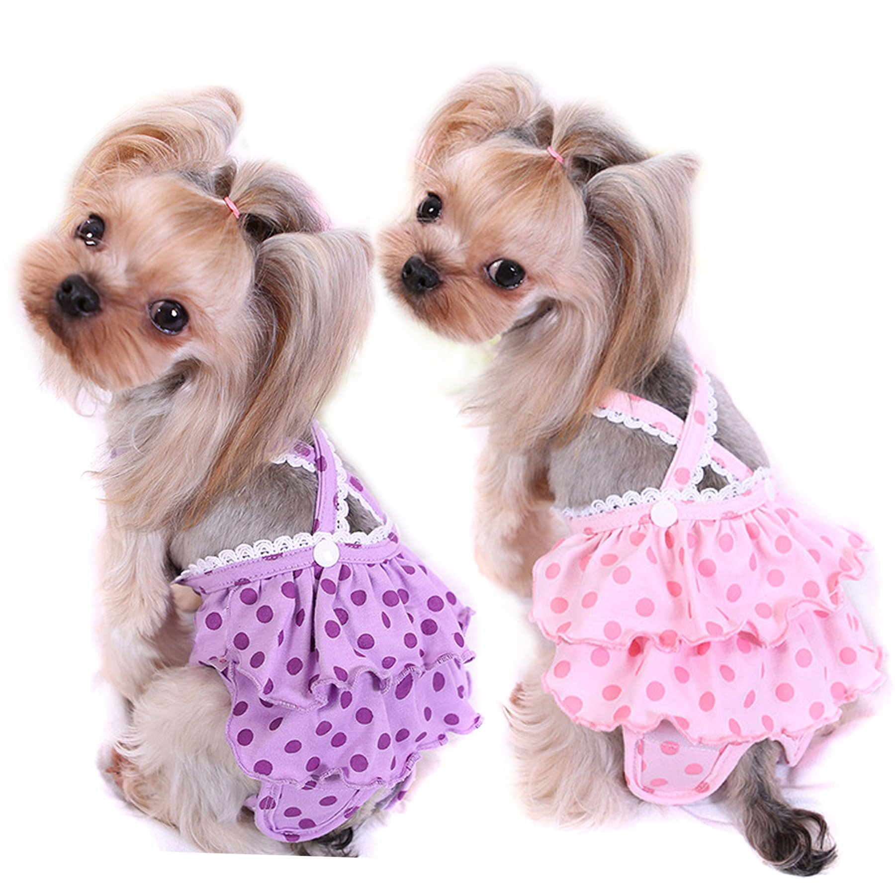 Alfie Pet by Petoga Couture - Frona Diaper Dog Sanitary Pantie with Suspender 2-Piece Set for Girl Dogs - Size: Medium