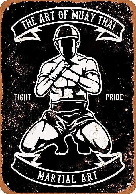 Shunry Martial Arts Muay Thai Placa Cartel Vintage Estaño ...