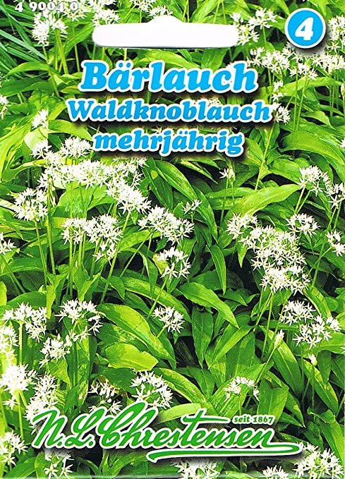 B/ärlauch//Waldknoblauch