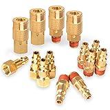 PowRyte 14-Piece 1/4-Inch Industrial Solid Brass