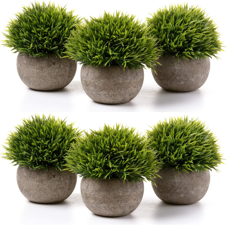 T4U Cactus Artificial Mini Tamaño Plásticas Paquete de 6, Decorativas Suculentas Plantas Artificiales Decoración para Mesa de Comedor Sala de Estar Idea Regalo para Cumpleaños Boda Navidad