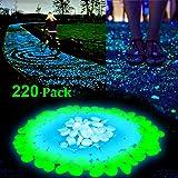 Guijarros para jardín que brillan en la oscuridad por GeMoor, 220 piezas; piedras luminosas para el camino del patio, acuario, piedras de grava decorativas en azul, verde y blanco