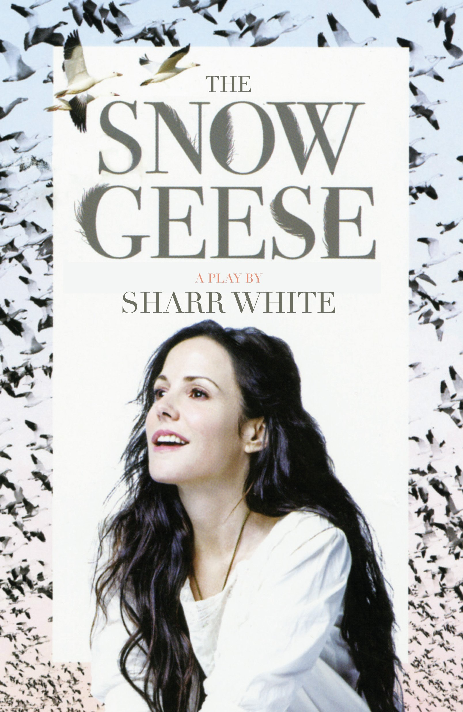 Download The Snow Geese PDF