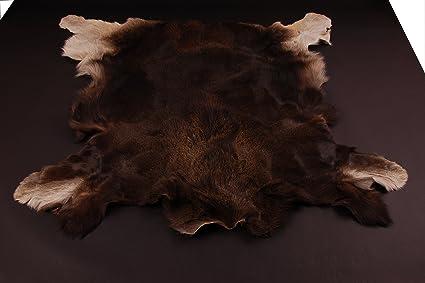 European Elk Moose Hide Skin Rug Pelt Hunting Trophy Amazoncouk