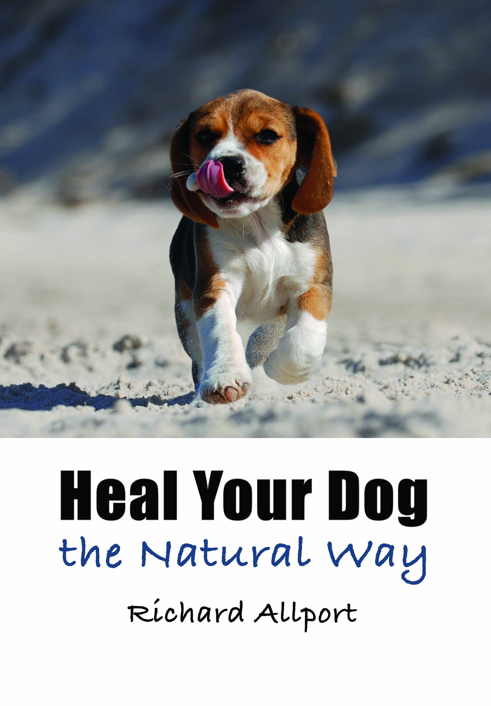 Canine herbal therapy - Heal Your Dog The Natural Way Richard Allport 9781844681105 Amazon Com Books