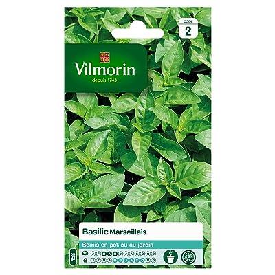 Seed Bag Extremely Fragrant Marseille Basil Vilmorin : Garden & Outdoor