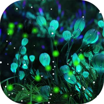 Amazoncom Firefly Forest Live Wallpaper Free Appstore For Android