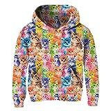 BFUSTYLE Big Teen Girls RainbowKitty Sweatshirt