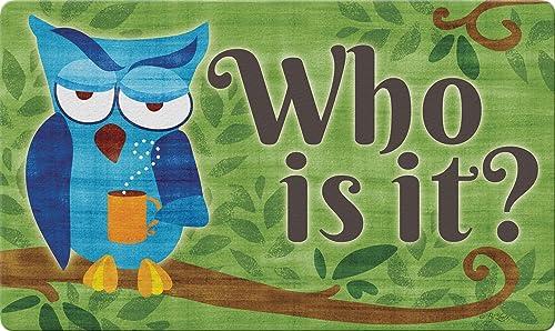 Toland Home Garden 800454 Punny Owl Doormat, 18 x 30 , Multicolor