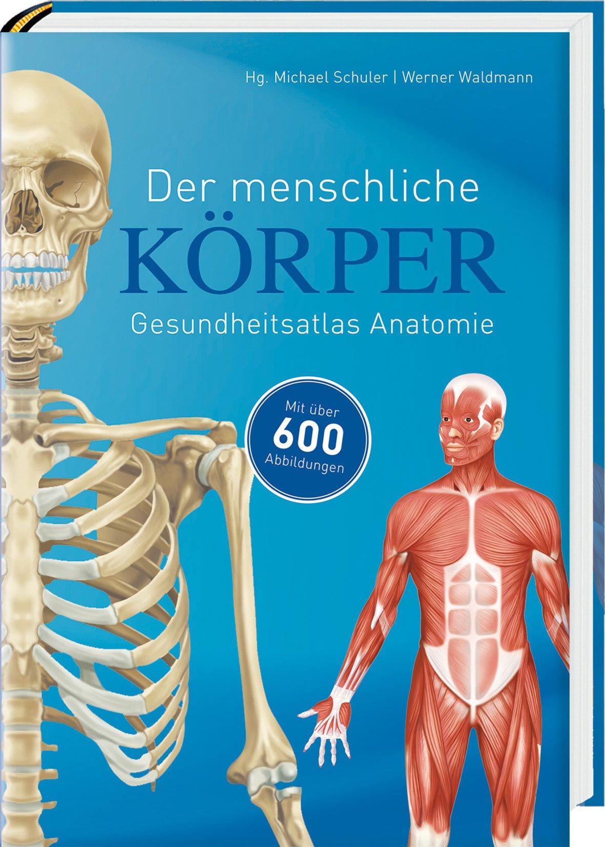 Der menschliche Körper: 9783869414959: Amazon.com: Books