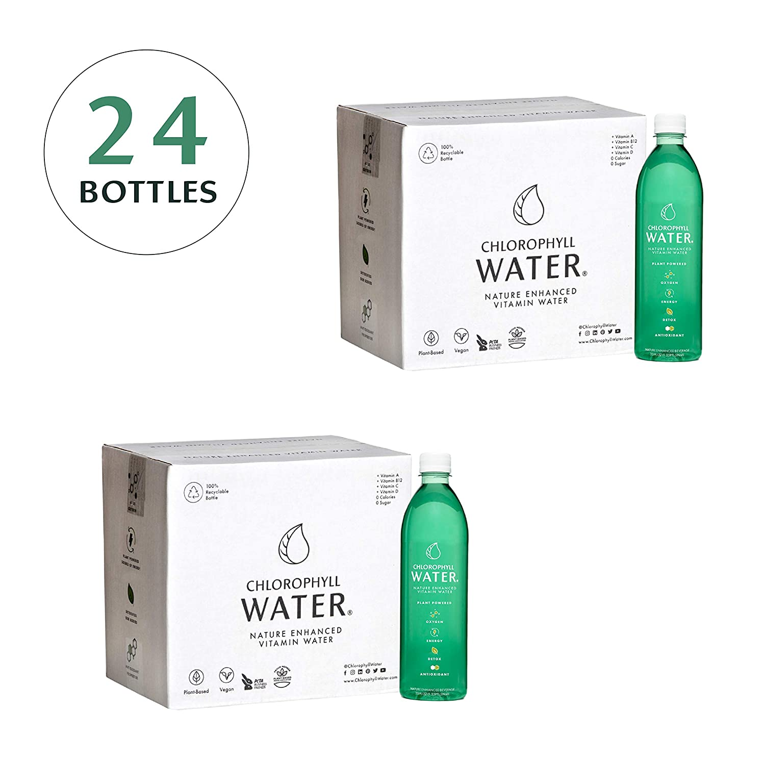 2 Cases: Chlorophyll Water: Nature Enhanced Vitamin Water For Energy, Detox, Antioxidants, Liquid Chlorophyll, Purified Water with Vitamins A, B12, C & D, Zero Calories, 20oz (24 Bottles)