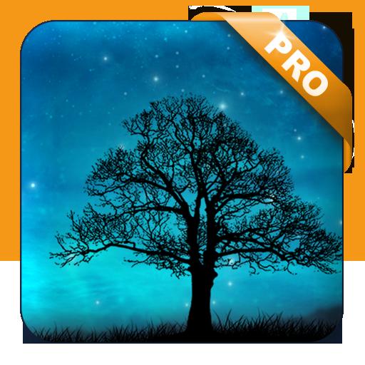 live wallpaper pro  Dream Night Live Wallpaper Pro: Amazon.ca: Appstore for Android
