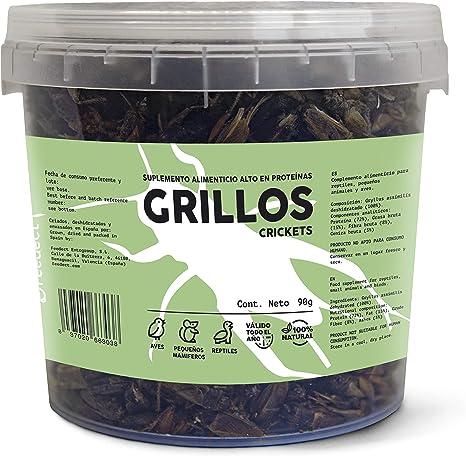 Feedect Grillo Deshidratado (90g) - Complemento Alimenticio Rico en Proteínas - 100% Natural - Comida para Pájaros, Aves de Corral, Tortugas, Saurios, ...
