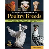 Storey's Illustrated Guide to Poultry Breeds: Chickens, Ducks, Geese, Turkeys, Emus, Guinea Fowl, Ostriches, Partridges, Peaf