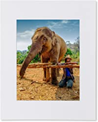 Matted Photo Print – Elephant and Keeper – Chiang Mai, Thailand – Wall Decor – 16x20-11x14