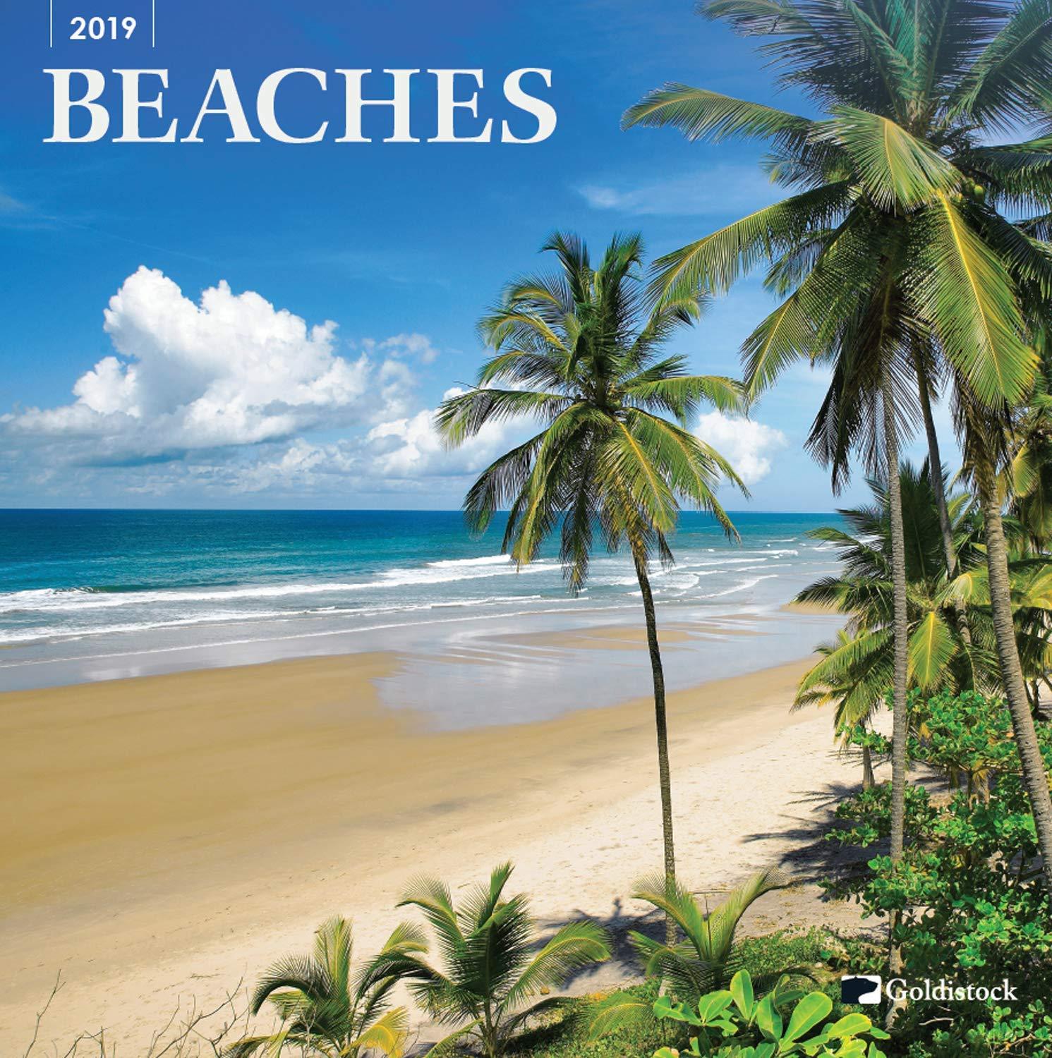 Goldistock''Beaches'' Eco-Friendly 2019 Large Wall Calendar - 12'' x 24'' (Open) - Visit Paradise Anytime - Thick & Sturdy Paper