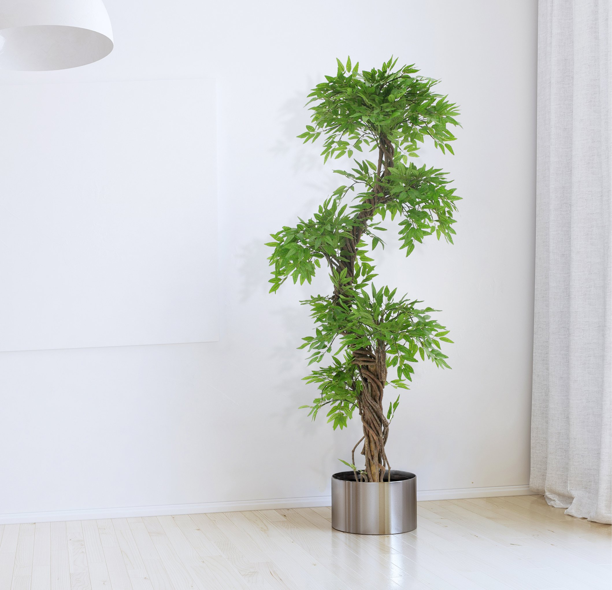 Vert Lifestyle Handmade Japanese Fruticosa Indoor Tree with Real Bark and Synthetic Leaves, Approx. 165 cm Tall by Vert Lifestyle