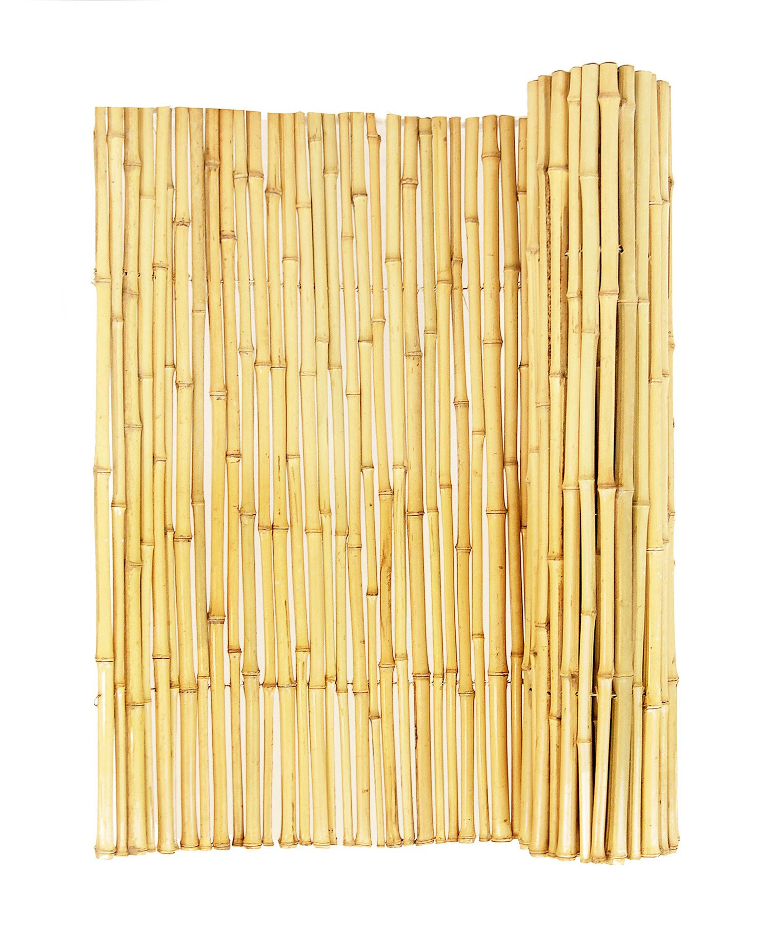 FOREVER BAMBOO Natural Rolled Bamboo Fence .75in D x 6ft H x 8ft L