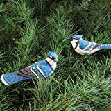 """Blue Jay Clip Ornament, Assorted 2, 4.5"""" x 2.25"""""""