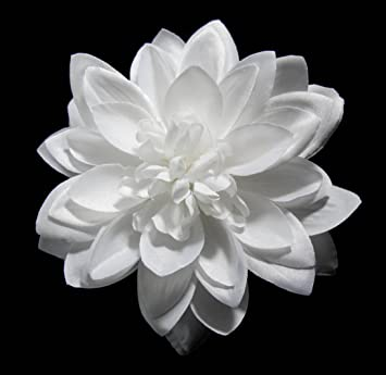 Amazon large white dahlia hair flower clip and pin brooch beauty large white dahlia hair flower clip and pin brooch mightylinksfo