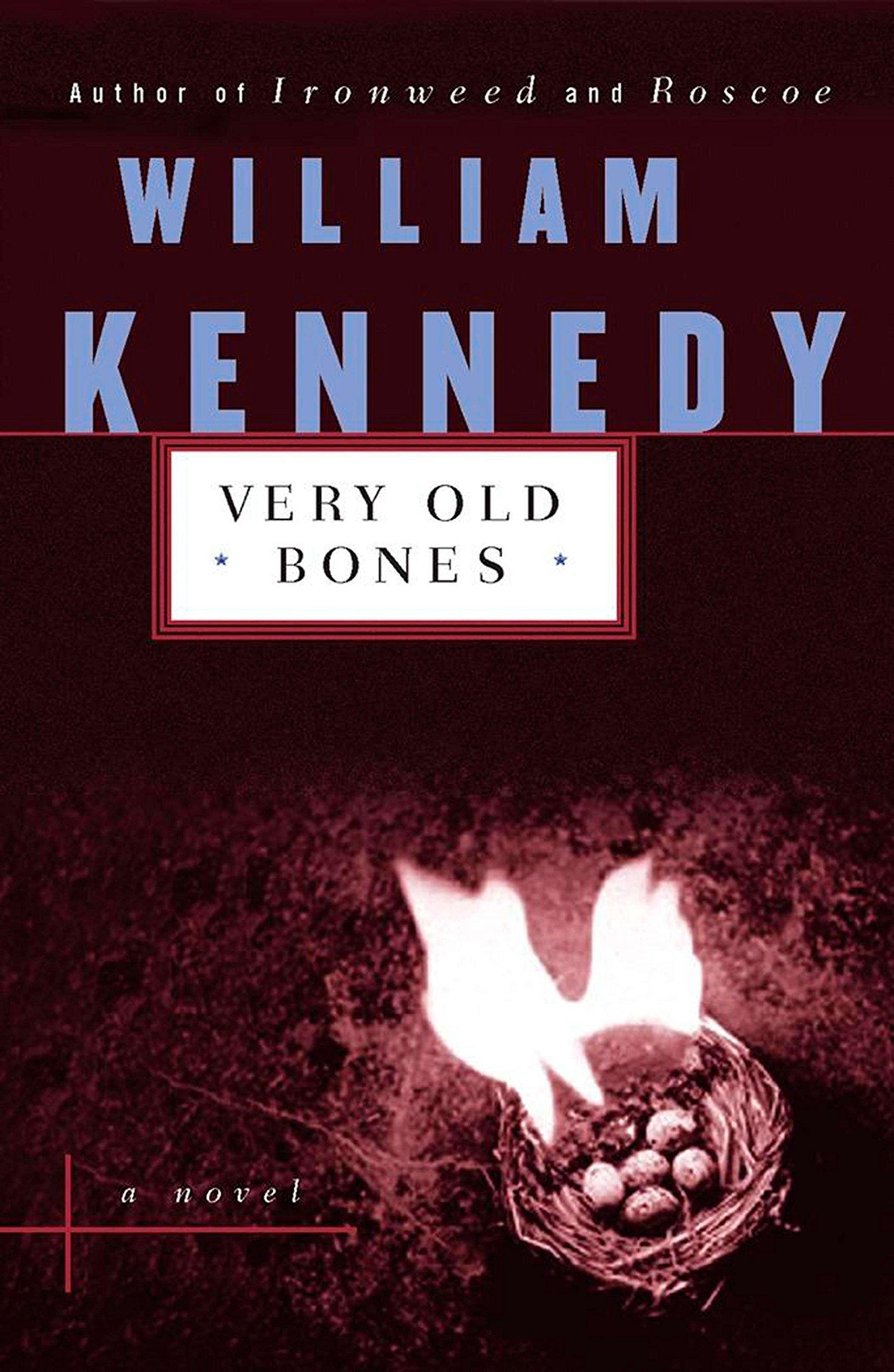 Download Very Old Bones (Contemporary American Fiction) PDF