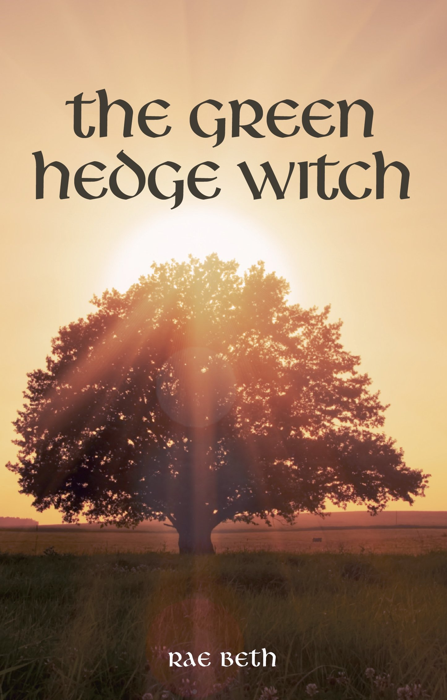 Amazon Com The Green Hedge Witch 2nd Edition Ebook Beth Rae Kindle Store She is the person you call when you develop a rash or get a toothache, and the doctor or dentist is unavailable. amazon com the green hedge witch 2nd