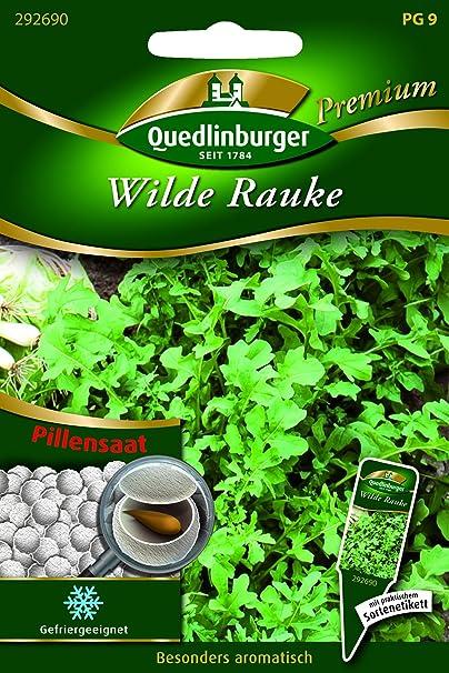 Quedlinburger-pilule sauvages rauke