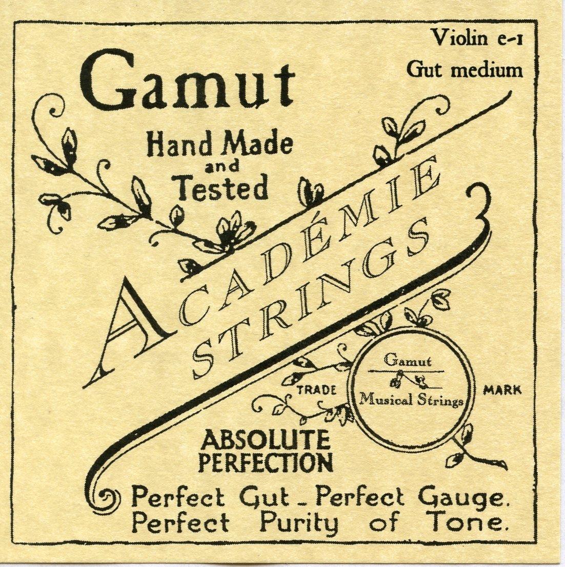 Academie Violin e-1 Gut Medium Gauge