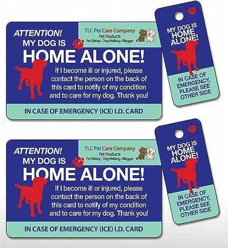 Amazon.com: Mi perro es Home Alone Pet Hielo de emergencia ...