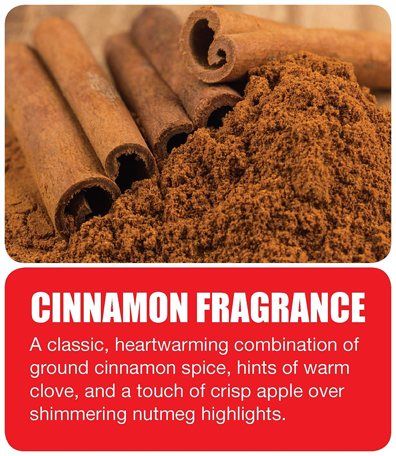 Big D 342 Odor Control Fogger, Cinnamon Fragrance, 5 oz (Pack of 12) - Kills Odors from fire, Flood, Decomposition, Skunk, Cigarettes, Musty Smells - Ideal for use in Cars (Вundlе оf Fіvе) by Big D (Image #2)