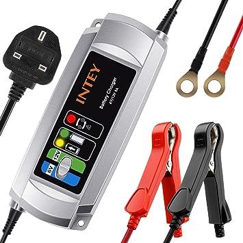 INTEY Cargador de batería de coche 5 A 6 V/12 V, cargador de ...