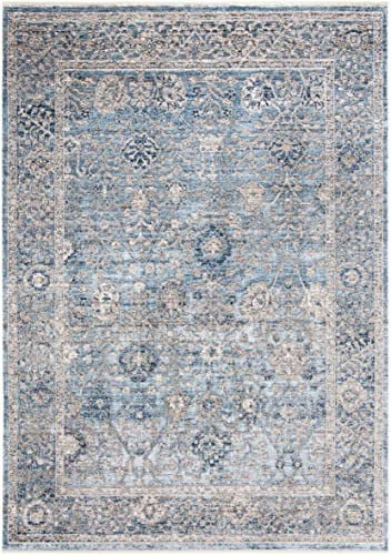 Safavieh Dream Collection DRM408J Vintage Oriental Distressed Viscose Area Rug