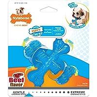 Nylabone Puppy Chew X Bone Chew Toy Beef Flavor Small/Regular - Up to 25 lbs.