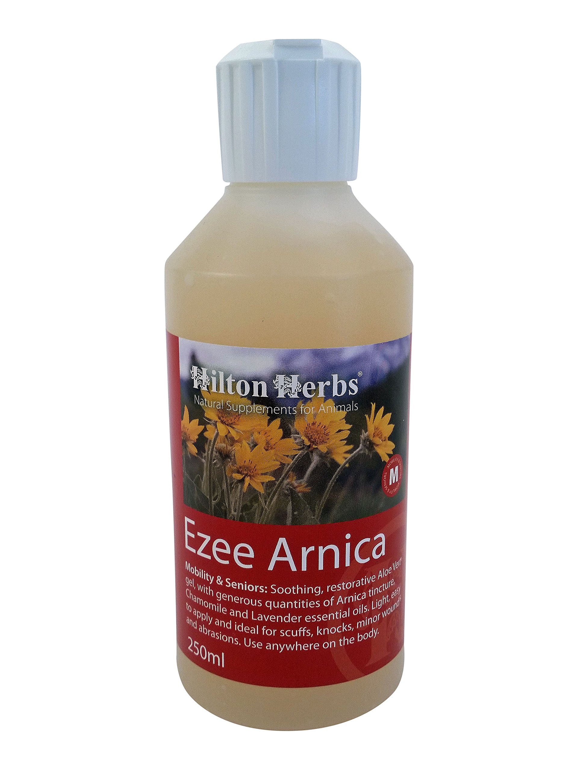 Hilton Herbs Ezee Arnica Gel for Knocks & Bruises, 250ml Bottle by Hilton Herbs