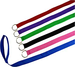 """6 Foot Slip Lead, Slip Leads, Kennel Leads Bulk Dog Leashes with O Ring for Dog Pet Animal Control Grooming, Shelter, Rescues, Vet, Veterinarian, (Size: 6' x 1"""", Colors: Various) (120 Pack)"""