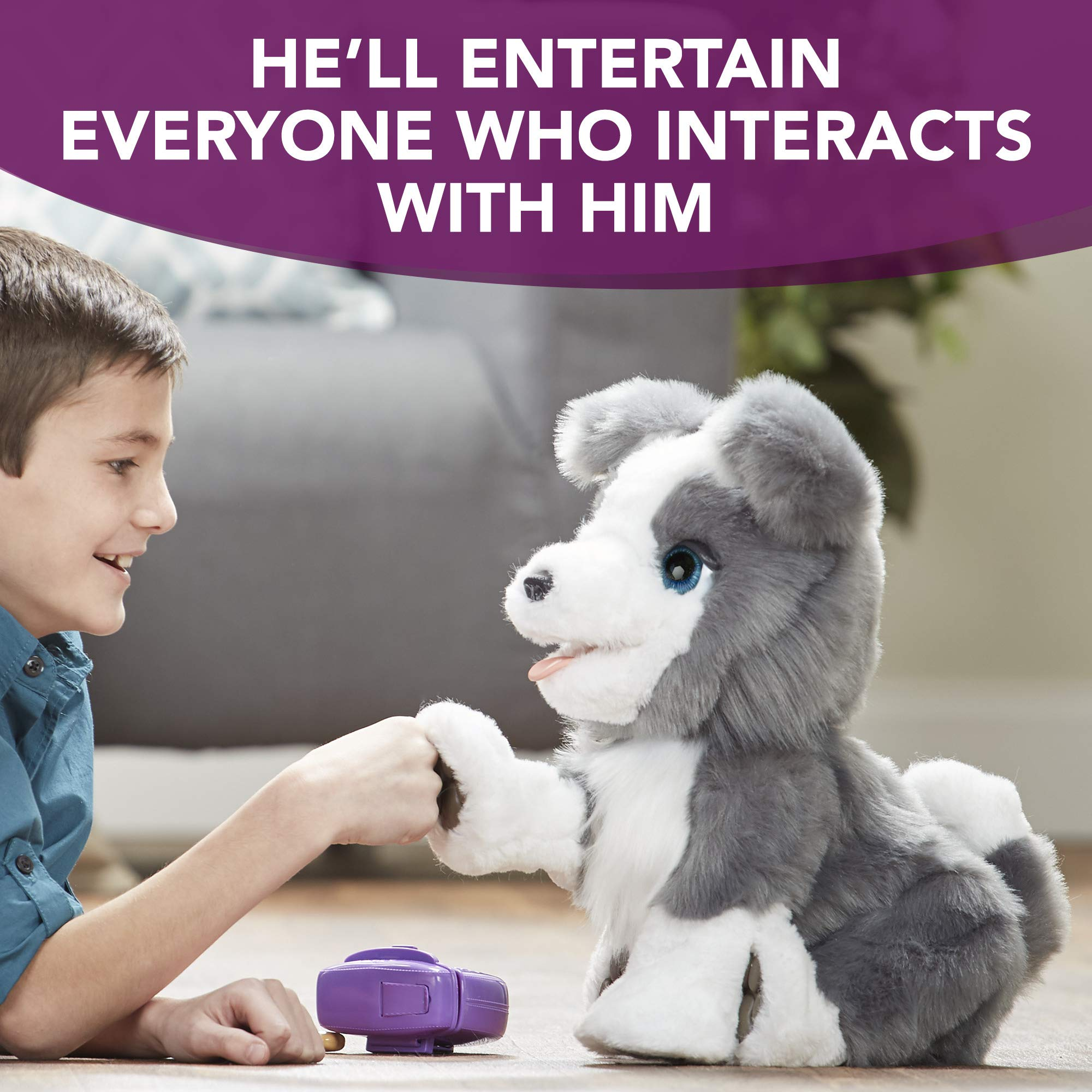 FurReal Friends Ricky, the Trick-Lovin' Interactive Plush Pet Toy, 100+ Sound-and-Motion Combinations, Ages 4 and Up by FurReal (Image #5)