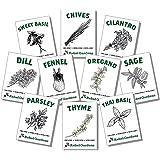 Rebel Gardens Organic Non GMO Heirloom Non Hybrid Herb Seed (10 Culinary Varieties Pack)