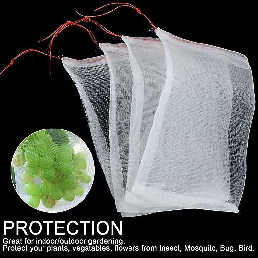 Ecover - Malla de mosquitera de Malla para Insectos – Protege ...