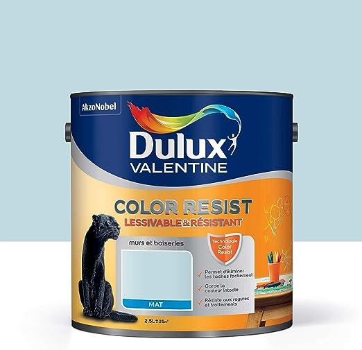 Peinture Color Resist Dulux Valentine Lessivable Et Resistante Pour Murs Boiseries Aspect Mat Bleu Givré 2 5 L Dulux Valentine