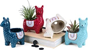 Cute Alpaca Succulent Pots, 4 Pc. Set Animal Planter, Decorative Ceramic Planters for Natural Indoor Gardens and Cacti, Colorful Office and Home Decor for Living Room, Kitchen, or Desk