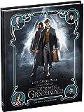 Luzes, Câmera, Magia.. Os Bastidores de Animais Fantásticos e os Crimes de Grindelwald
