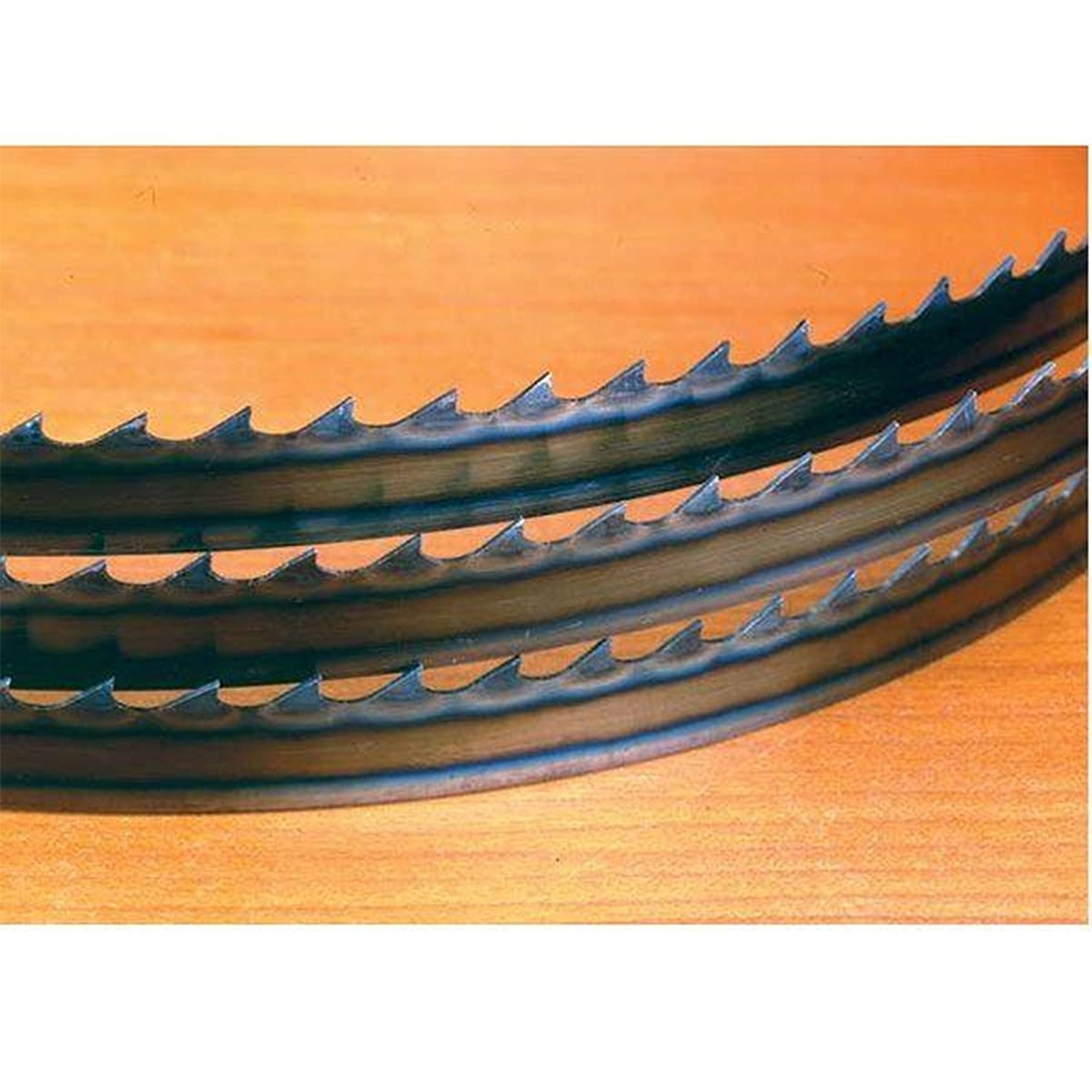 Timber Wolf Bandsaw Blade 111' x 1/4' x 6 TPI Alternet Set PS Wood Machines