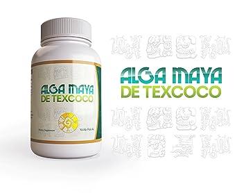 Amazon.com: Alga Maya Spirulina - 500mg Maximum Strength Natural ...