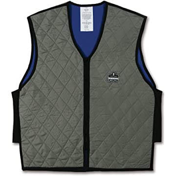 best Ergodyne Chill-Its 6665 Evaporative Cooling Vest - Gray reviews