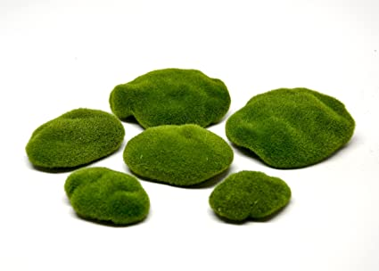 Amazon Pixie Glare 6 Pack Artificial Moss Stonesrocks For