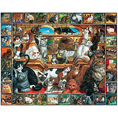 White Mountain Puzzles World of Cats - 1000 Piece Jigsaw Puzzle: Toys & Games