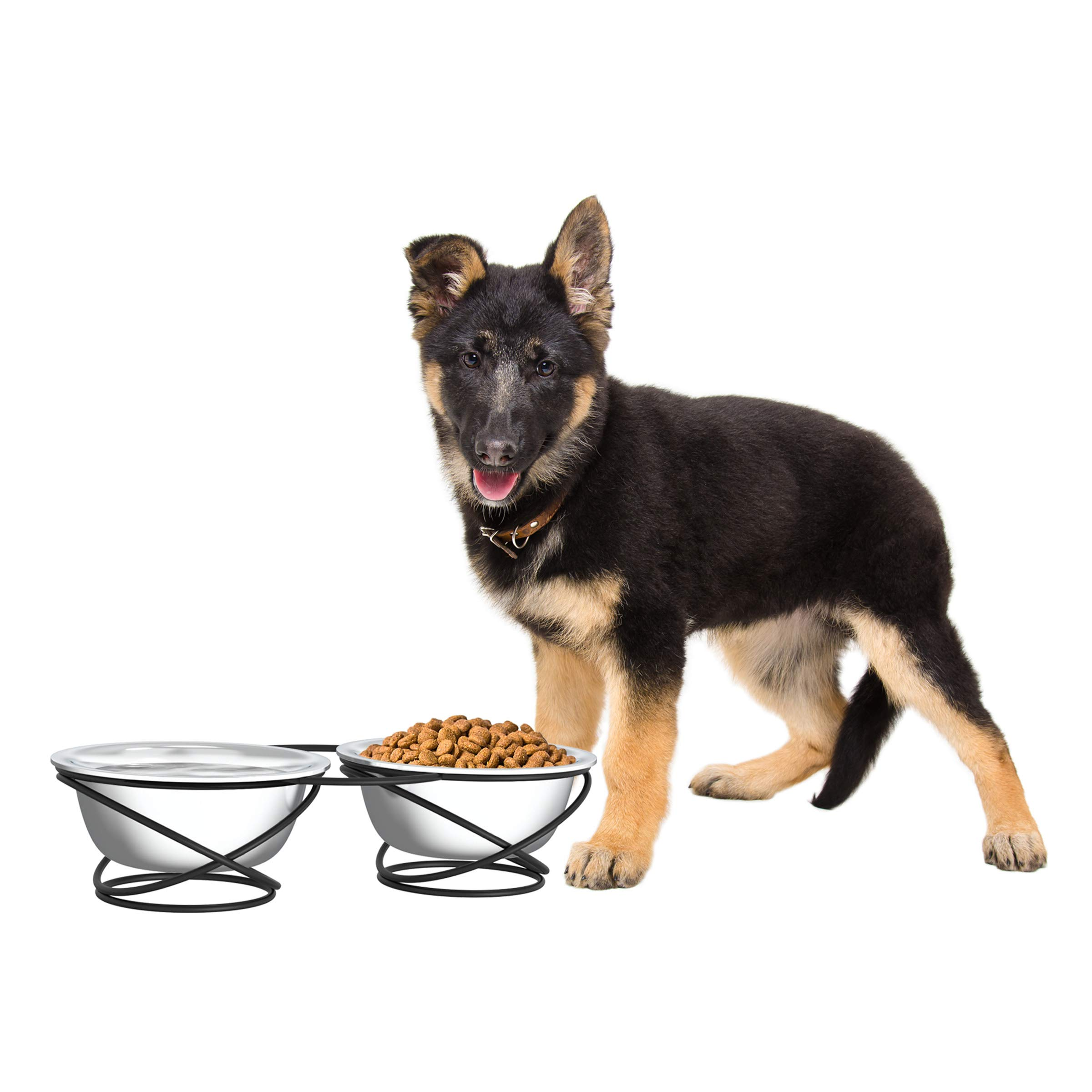 PETMAKER Stainless Steel Raised Food & Water Bowls with Decorative 3.5'' Tall Stand for Dogs & Cats-2 Bowls, 40oz Each-Elevated Feeding Station by PETMAKER