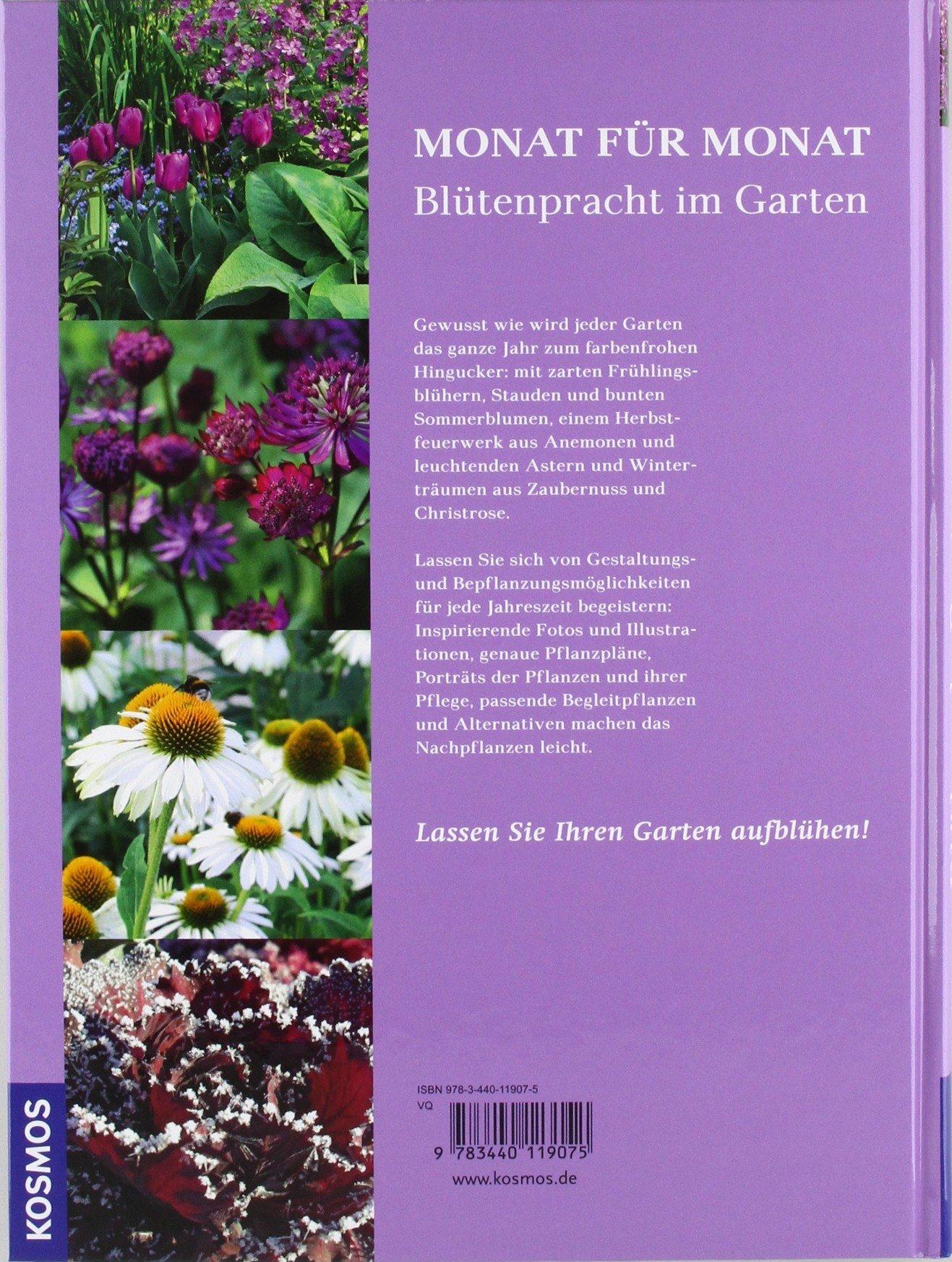 Blühende Beete für jede Jahreszeit: Amazon.de: Christine Breier: Bücher